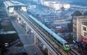 Phải đưa đường sắt Cát Linh - Hà Đông vào khai thác trong năm 2020