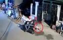 Trộm dùng súng điện bắt chó nhanh như chớp