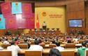Quốc hội sửa Luật Cư trú, sổ hộ khẩu chỉ còn tồn tại tới năm 2022