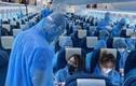 Khởi tố vụ án hình sự tiếp viên Vietnam Airlines làm lây lan COVID-19