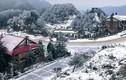 Dự báo sẽ có mưa tuyết, người dân đến đâu để thưởng ngoạn?