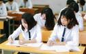 93 học sinh đoạt giải Nhất Kỳ thi học sinh giỏi quốc gia 2020-2021
