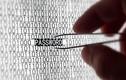 Kaspersky Lab: 51% người dùng lưu trữ mật khẩu thiếu an toàn