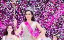 Vừa đăng quang, Hoa hậu Trần Tiểu Vy đã vướng tin đồn điểm thấp