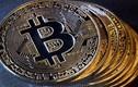 Giá Bitcoin được dự đoán xuống 'thấp nhất mọi thời đại' còn 7.900 USD