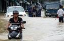 Bão số 6 giật cấp 11 cách đất liền 300km, áp sát Khánh Hoà - Quảng Ngãi