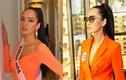 Nhan sắc gợi cảm của thí sinh định bán nhà thi Hoa hậu Hoàn vũ VN