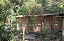Lý do không khởi tố vụ 9 bộ xương người ở Tây Ninh