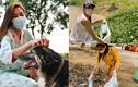 Võ Hoàng Yến đi cách ly vẫn tích cực chăm chó, nhặt rác, hái rau