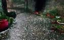 Thời tiết hôm nay 5/4: Bắc Bộ rét, đề phòng lốc sét và mưa đá