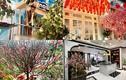 Sao Việt trang trí nhà đón Tết: Ai chịu chi hoành tráng nhất?