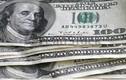 Tỷ giá ngoại tệ ngày 26/6: USD giảm tiếp