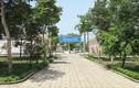 TP.HCM thêm 2 bệnh viện dã chiến, chuẩn bị kịch bản có 10.000 ca COVID-19