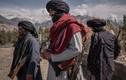 Taliban điều hàng trăm quân tới thành trì phản kháng cuối cùng