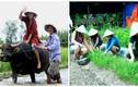 3 loại hình du lịch dân dã của VN hút khách Tây