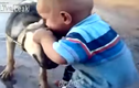 Clip hài hước: Em bé cắn lại con chó