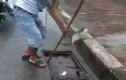 Siêu đẳng về bắt cá ở ống cống ngoài đường