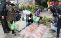 Thiên đường hoa Tết ở phiên chợ Bưởi cuối năm