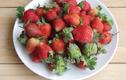 Mẹo nhỏ giúp rửa hoa quả sạch hóa chất, thơm ngon hơn