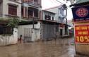 Con nghiện sát hại nhân viên y tế ở Hà Nội