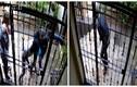 Bốn tên trộm hung hăng bó tay trước cánh cửa sắt