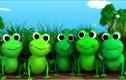"""Nghe """"Chú ếch con"""" phiên bản tiếng Ý lạ tai"""