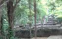Khám phá nghĩa trang thái giám độc nhất vô nhị Việt Nam