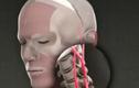 Clip ca cấy ghép đầu người chấn động giới y khoa