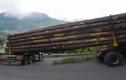 Tài xế xe chở gỗ vào khúc cua gấp tài tình