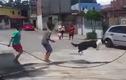 Chú chó nhảy dây cực điệu nghệ gây ngỡ ngàng