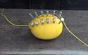 Cách tạo ra lửa từ quả chanh vô cùng đơn giản