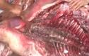Lạng Sơn thu giữ 20 tấn thịt, chân giò lợn bốc mùi hôi thối