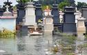 Ảnh: Lo sợ dịch bệnh vì nghĩa trang ngập nước nhiều tháng
