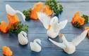 2 cách tỉa thiên nga bằng củ cải đẹp, đơn giản