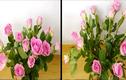 Tuyệt chiêu dùng băng dính cắm hoa để có lọ hoa đẹp