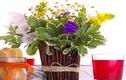 Những mẹo hay người yêu hoa sẽ rất thích