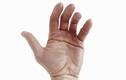 Lý giải tại sao con người khi sinh ra lại có đường chỉ tay