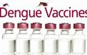 Thế giới đã có vắc xin sốt xuất huyết, tại sao VN chưa dùng?