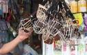 """Video: Rọ mõm chó bán đắt như """"tôm tươi"""""""