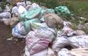 Video: Đô thị kiểu mẫu Hà Nội ngập trong rác thải