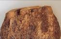 Video: Vì sao gỗ nu đắt gấp nhiều lần gỗ sưa?