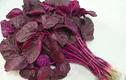 Video: Ăn rau dền đỏ đúng cách trị được nhiều bệnh