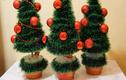 Video: Hướng dẫn làm 3 mẫu cây thông để bàn cực đẹp trang trí Noel