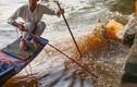 Bức xúc cảnh chích điện bắt cá chép ngày ông Công, ông Táo