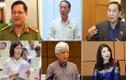 Kỳ họp thứ 7, Quốc hội XIV: Những phát ngôn ấn tượng