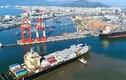 Vực dậy từ nợ nần, Vinalines chi 415 tỷ đồng mua lại cổ phần cảng Quy Nhơn