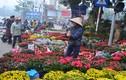 Khẩn cấp: Tìm những người mua bán ở chợ hoa Mê Linh để phòng dịch COVID-19