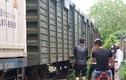 Người phụ nữ mới sinh con lao vào tàu hỏa tự tử ở Hà Nội