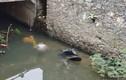 Phát hiện 2 thanh niên tử vong dưới suối bên cạnh chiếc xe máy
