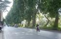 Đường phố Hà Nội bớt ngột ngạt trong ngày đầu nghỉ Tết dương lịch